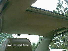 BMW Headliner