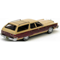 1973 to 1977 Chrysler Town & Country wagon headliner